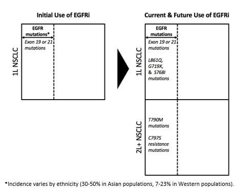 Use of EGFRi in oncology treatment - Blue Matter Consulting