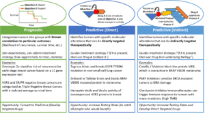 Types of tests in precision medicine oncology