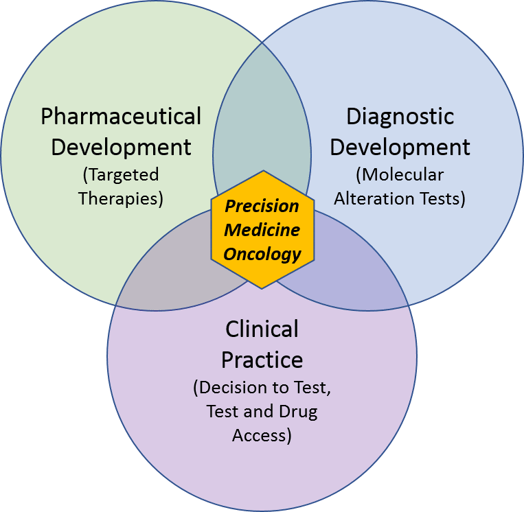 Precision Medicine Oncology Part Ii  Blue Matter Consulting