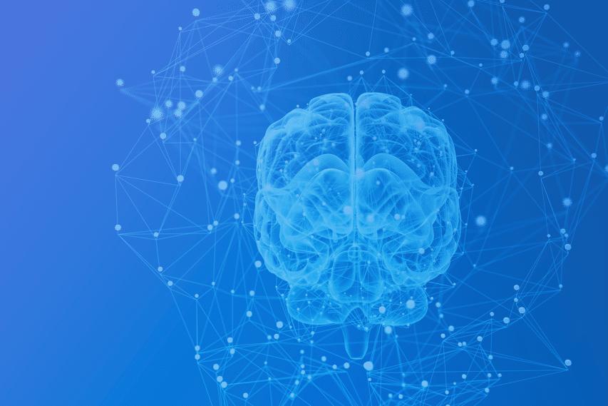 Brain, Central Nervous System, Blue Matter