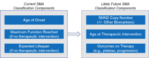 Spinal Muscular Atrophy (SMA) Classification Components, Current and Future